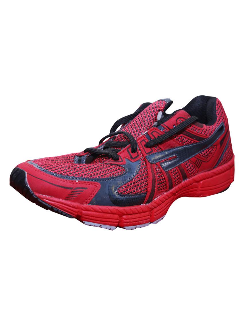Shopclues Sports Shoes