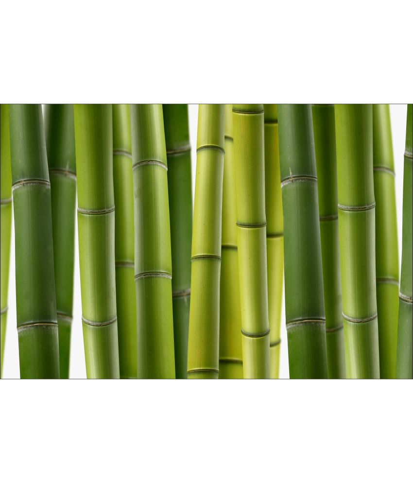 Buy retcomm art digital print wall art fresh bamboo online for Buy digital art online