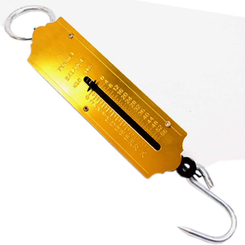 Buy 25kg portable fish hook hanging spring weight weighing for Fish weight scale