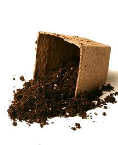 Organic potting mix medium coco peat perlite compost for Bulk potting soil