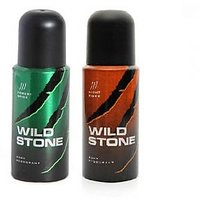 WILD STONE DEO PACK OF 2(FOREST SPICE+NIGHT RIDER)