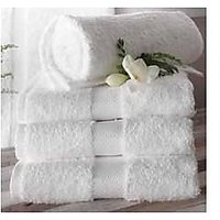 100% Terry Cotton Towel