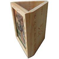 Parvidvap Handicrafts White Wood One Plate Pen Stand