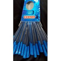 Karnavati Set Of 20 Blue Ball Pen