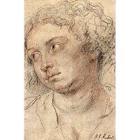 Head Of A Woman [3] By Rubens - Fine Art Print