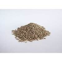 CUMIN SEEDS (JEERA) 200 Gm PACK INDIAN SPICE