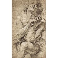 Study Of Daniel In The Lion'S Den By Rubens - Canvas Art Print