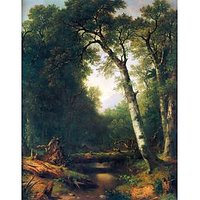 A Creek In The Woods By Asher Brown Durand - Museum Canvas Print