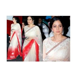Richlady Fashion Sri Devi In Red And White Saree