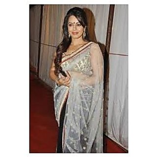 Richlady Fashion Mahima Chaudhry Net Border Work Black & White Saree
