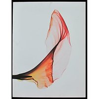 Abstract Leaf Art With White Background And Black Border