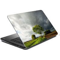 Mesleep Nature Laptop Skin LS-43-249