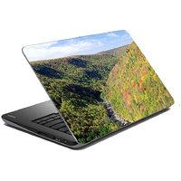 Mesleep Nature Laptop Skin LS-44-249