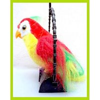 Talking Parrot Musical Toy For Kids