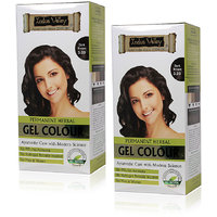 Indus Valley Permanent Herbal Hair Colour Dark Brown 3.0 One Time Use (Set Of 2)