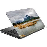 Mesleep Nature Laptop Skin LS-39-249
