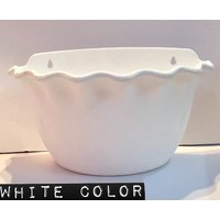 Platinum Pot Set Of Two Piece Wall Hanging White Color With Self Watering
