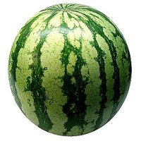 Watermelon Hybrid Seeds Pack Of 15