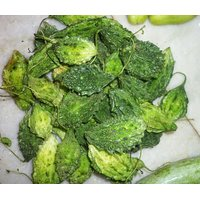 Bitter Gourd Small Seeds Pack Of 20