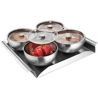 Dinette 4 Pcs Stainless Steel Nut Bowl Set With Transparent Covers &Tray
