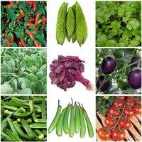 Vegetable Seeds Combo Pack - Chilli, Bitter Gourd, Coriander, Spinach PACK OF 9