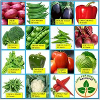Only For Organic ! Combo Of Fifteen Winter Kitchen Garden Hybrid Seeds !