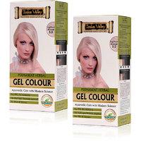 Indus Valley Permanent Herbal Hair Colour Lightest Blonde 9.0 Kit (Set Of 2)