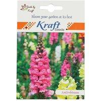 Antirrhinum/Snapdragon/Dog Flower Dwarf Flower Seeds (Pack Of 2) By Kraft Seeds