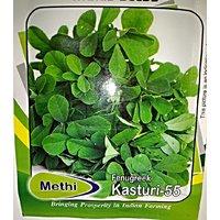 Kasoori Methi Seeds 100 Pc Free Shipping