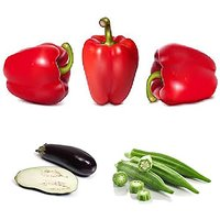 Vegetable Hybrid Seeds Combo - Lady Finger, Red Capsicum, Bringle (30 Seeds Of Each)