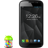 Micromax EG-111 CANVAS DUET II  (Black) Unlocked