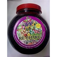 Re Charg 1.800 GM