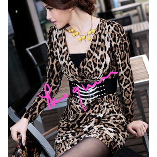 Tiger Print Full Sleeves Dress