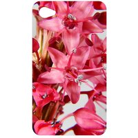 Persicaria Pink Flowers Close Up Back Cover Case For Apple IPod Touch 4