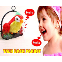 "7"" Talk Talking Back Parrot Bird Kids Toys Toy Gift THAT IMITATES YOUR VOICE"