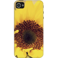 DailyObjects Sunflower Close Up Case For IPhone 4/4S