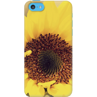 DailyObjects Sunflower Close Up Case For IPhone 5C