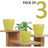 Pack Of 3 Stoic (Yellow Planters)