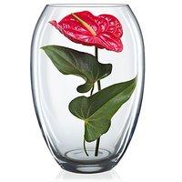 Bohemia Crystal - Vase (225 MM)