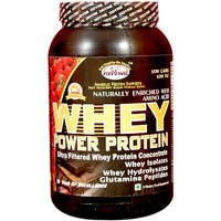 GDYNS Whey Power Protein 2.5kg