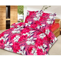 Collections Color Of Dream 100% Cotton Double Bedsheet 3