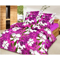 Collections Color Of Dream 100% Cotton Double Bedsheet - 6708286