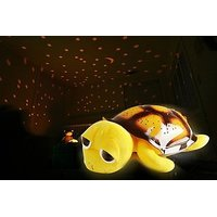 Drowsy Turtle Night Sky Lamp With Usb