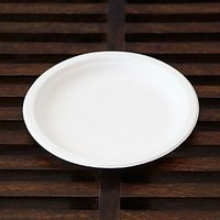 """10"""" Round Plates (Set Of 10) :Disposable & Ecofriendly From Simply Urbane"""""""