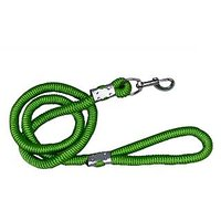 Petsplanet High Quality Nylon Rope Leash- Green ( LARGE ) - 74398942