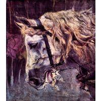 Head Of A Horse By Giovanni Boldini - Fine Art Print