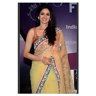 Richlady Fashion Sridevi Net Thread & Border Work Yellow Saree