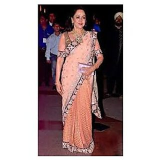 Richlady Fashion Hema Malini Viscose & Chiffon Border Work Pink Saree