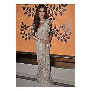 Richlady Fashion Bipasha Basu Net Machine & Border Work Cream Saree