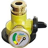 RUCHI Gas Safety Device